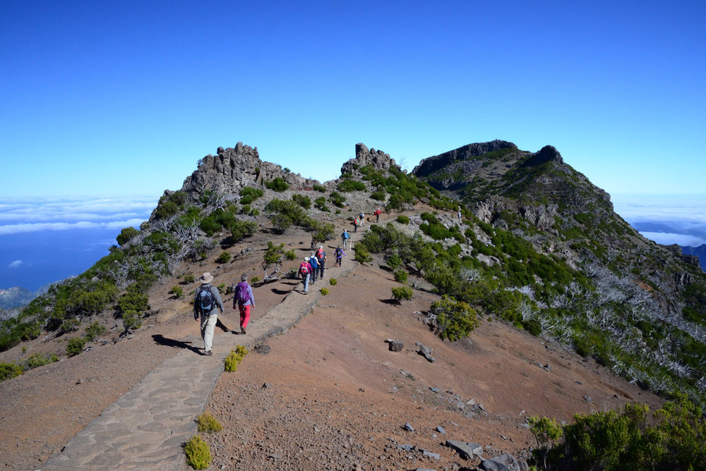In the Heart of Madeira  (Madeira  )    Grade 6 and Grade 7 Walking    from £1,125   Includes: Return flights, transfers, local transport costs, B&B accommodation, dinners taken at local restaurants and two Tour Leaders.
