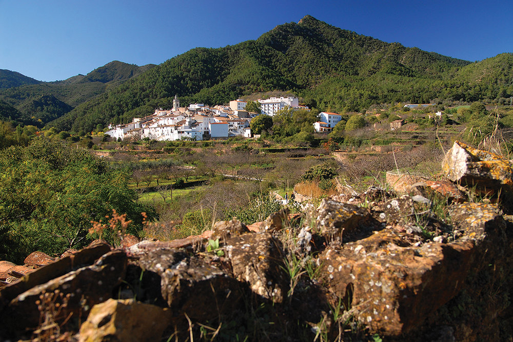 Orange Blossom Coast - Spain's Castellon RegionSpain's Castellon region, in north Valencia, is relatively unknown outside of Spain. This area offers walkers spectacular trails in the hills and along the coast, Moorish history and wonderful cuisine.October and November 2018 from £1225