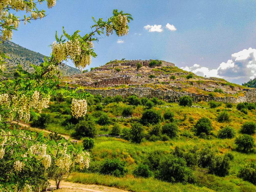 Spring Flowers of the Peloponnese - Walking the Southern Peloponnese from Gythion on the Mani peninsula...From £1225