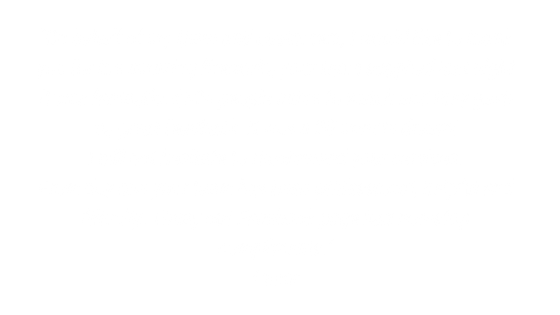 Customer review best fireworks