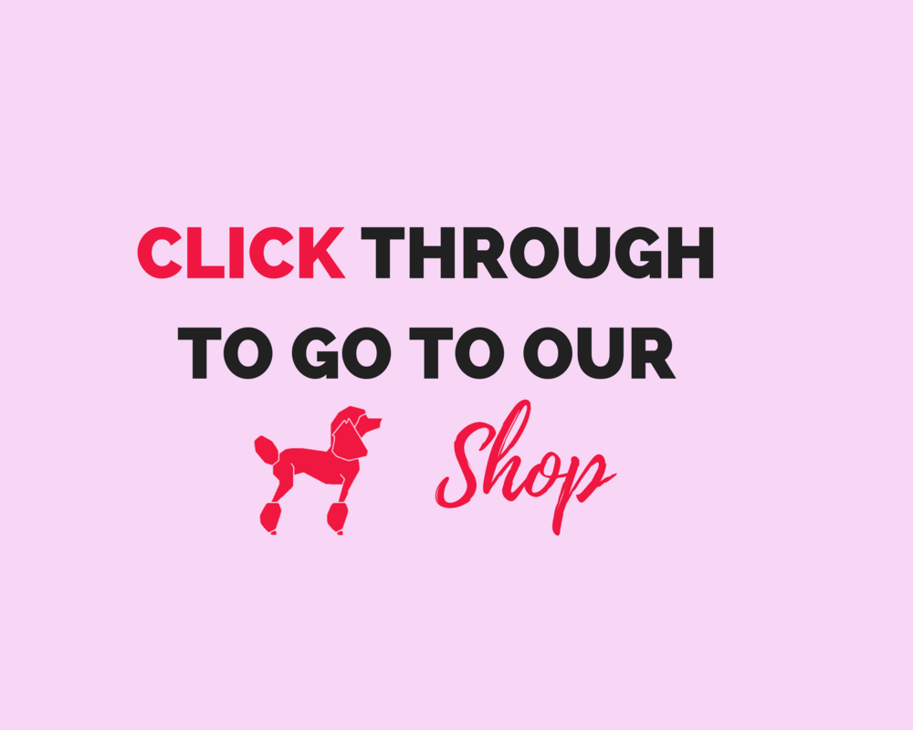 Click through to shop macarons at Ohlala