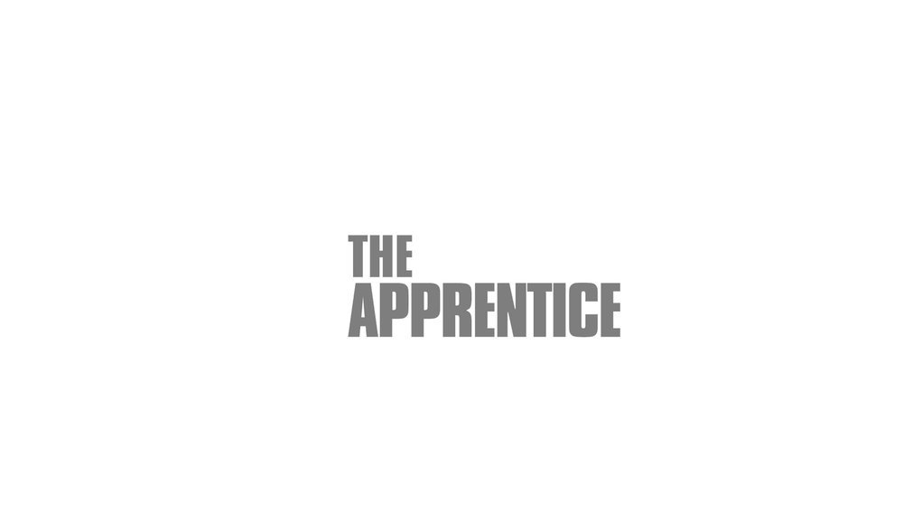 the apprentice grey s.jpg
