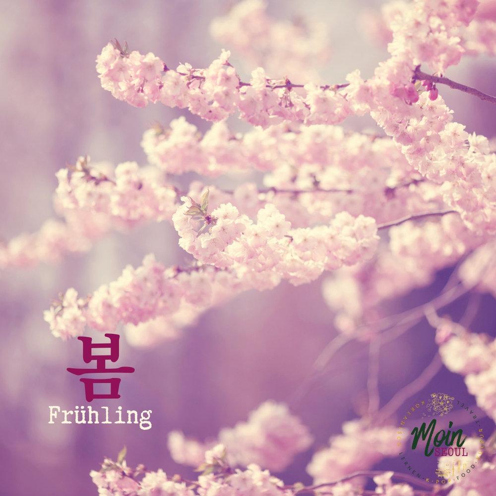 봄_Frühling_einfachhangeul_MoinSeoul.jpg