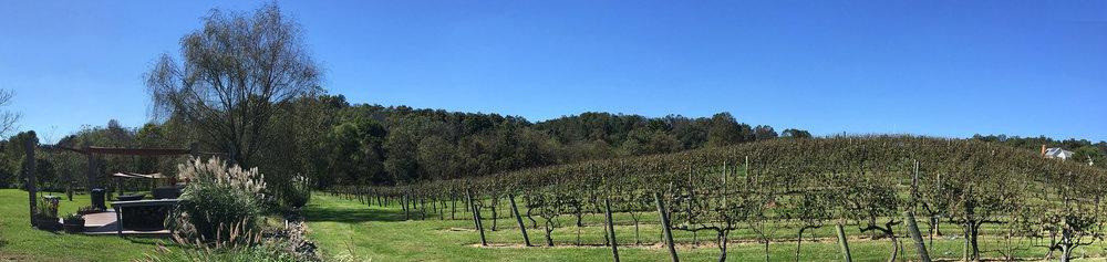 Photo image of Pearmund Cellars Winery