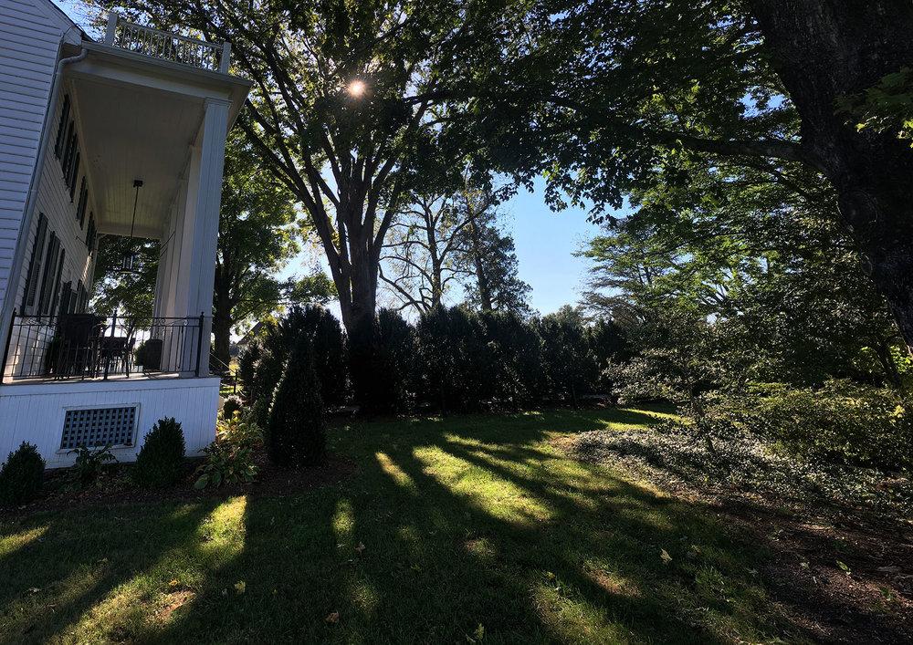 Photo image of existing boxwood lined entrance walk