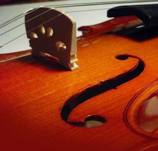 Homemain Music Wedding Civil Church Ceremony Humanist Quartet Trio Duo String Flute Harp Piano