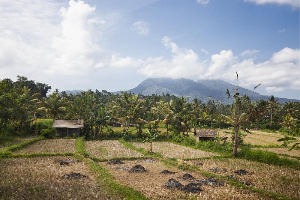 Bali_VolcanoScene.jpg