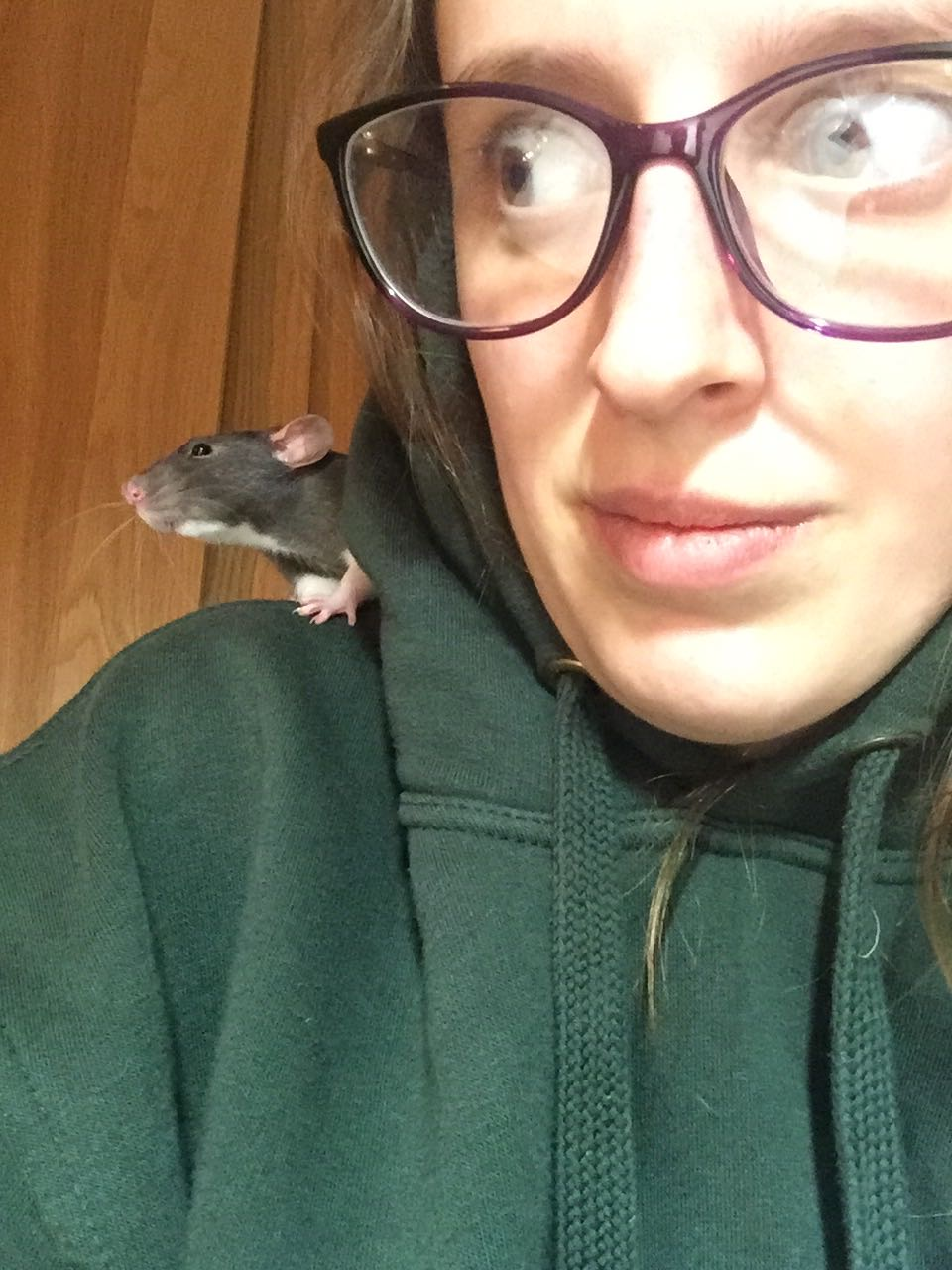 The author, with rat