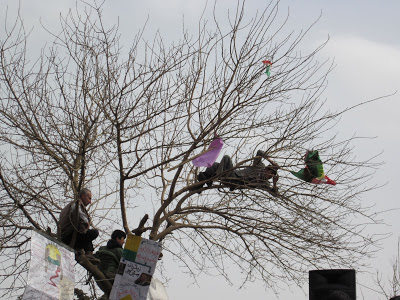 From  Demonstrations- Suleymania  (Photo:Men on the tree overlooking the stage where an open microphone was available for public statement. March8,2011)