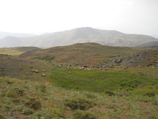The region near Sabir's relatives' tents