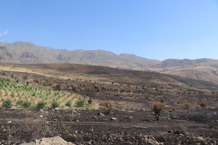 Burned farm land around the Barbazin Village.