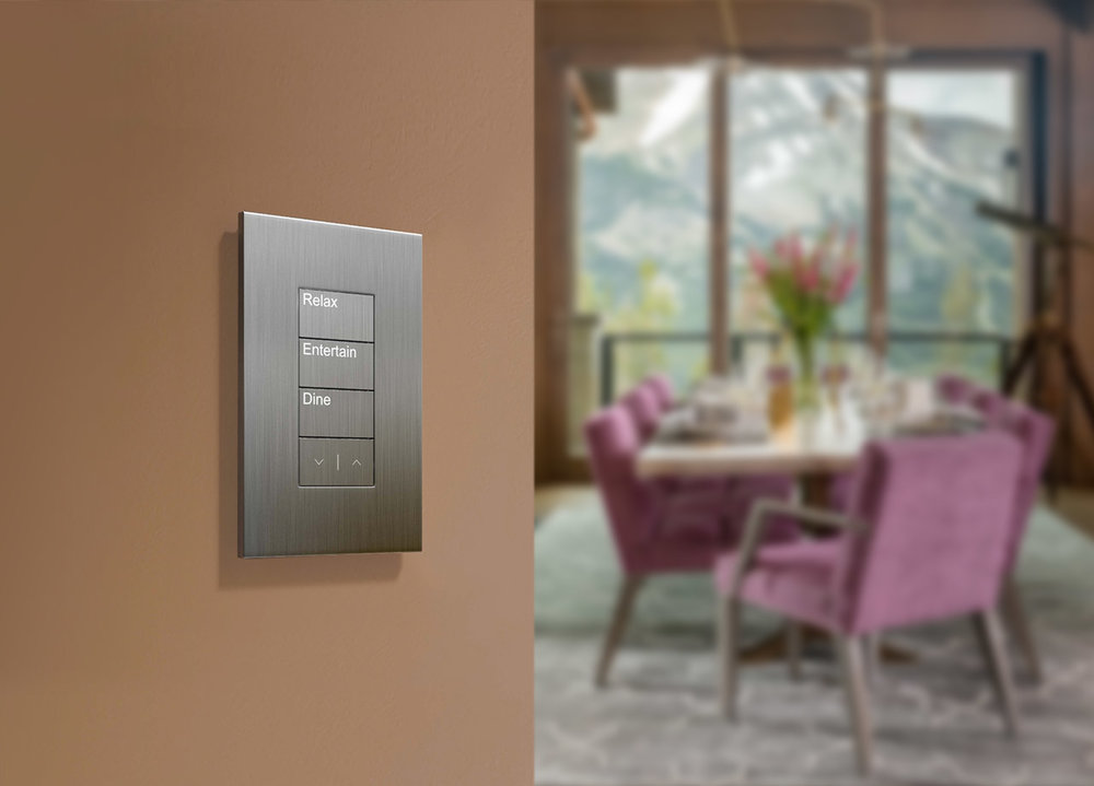 Pictured: Lutron Palladiom Wall Plate