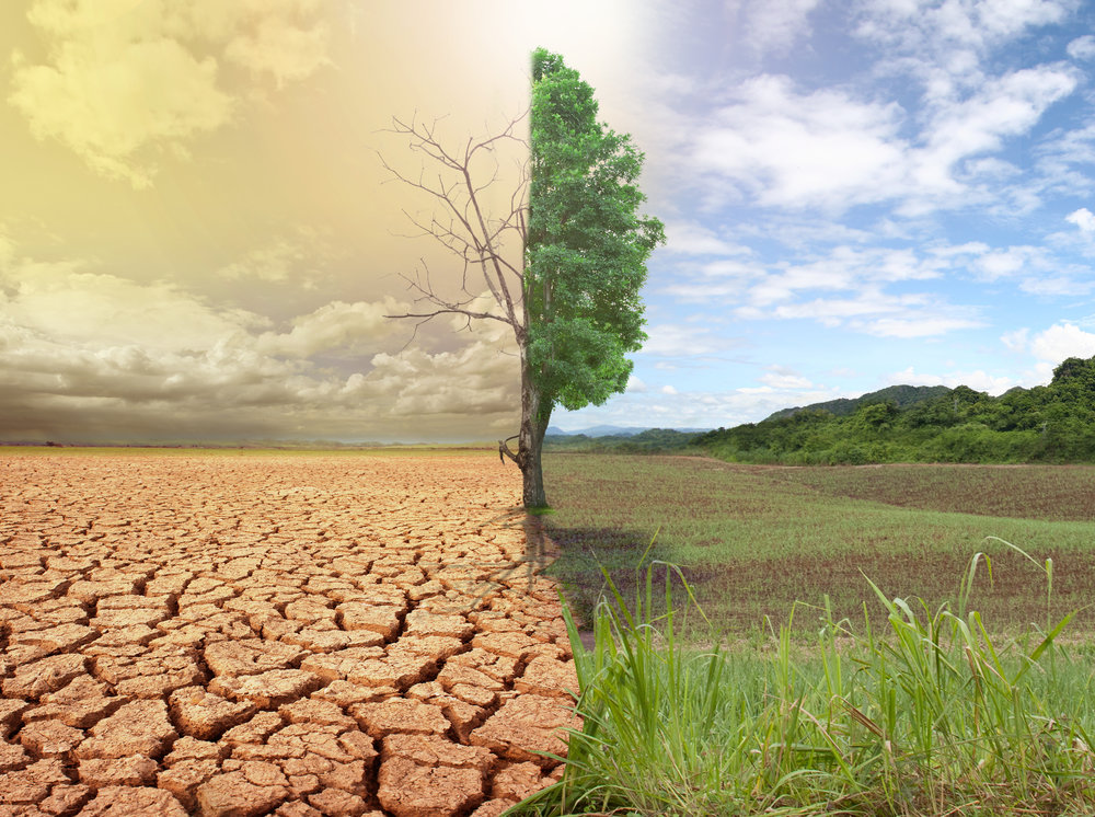 Saskatchewan Drought | Wolverine Drilling Inc.