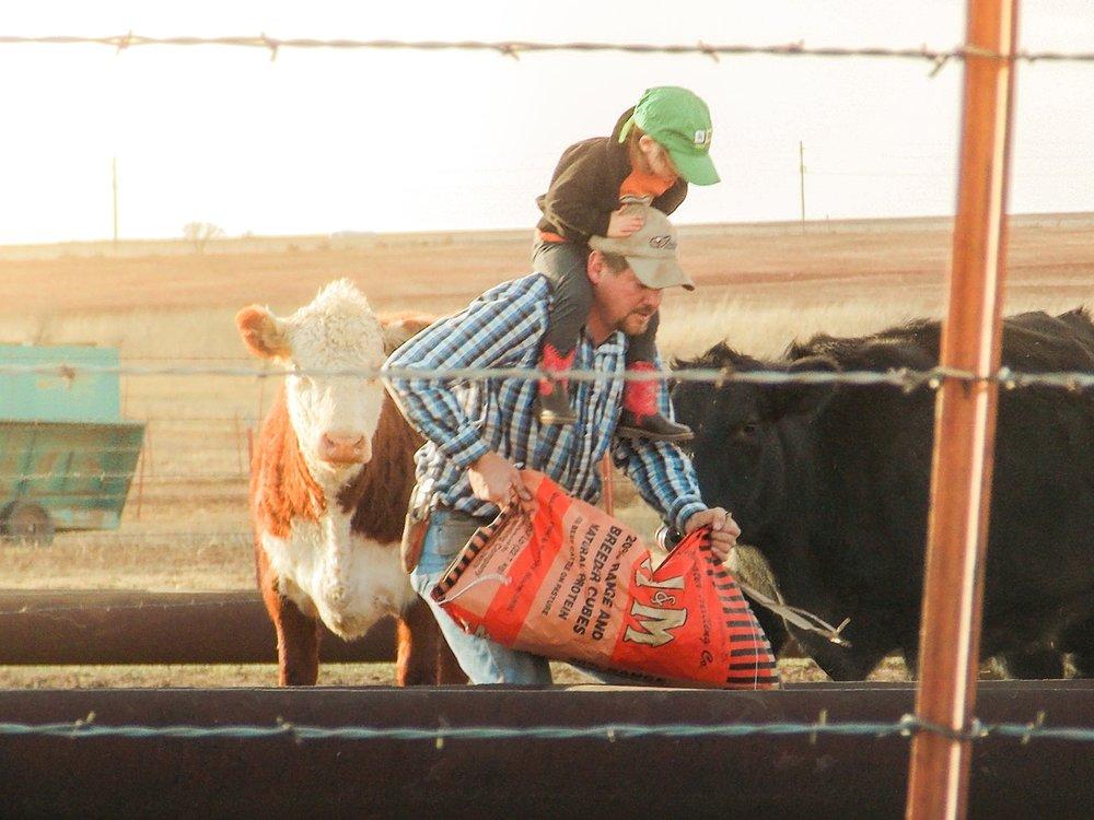 Oklahoma-Beef-Checkoff--5.jpg
