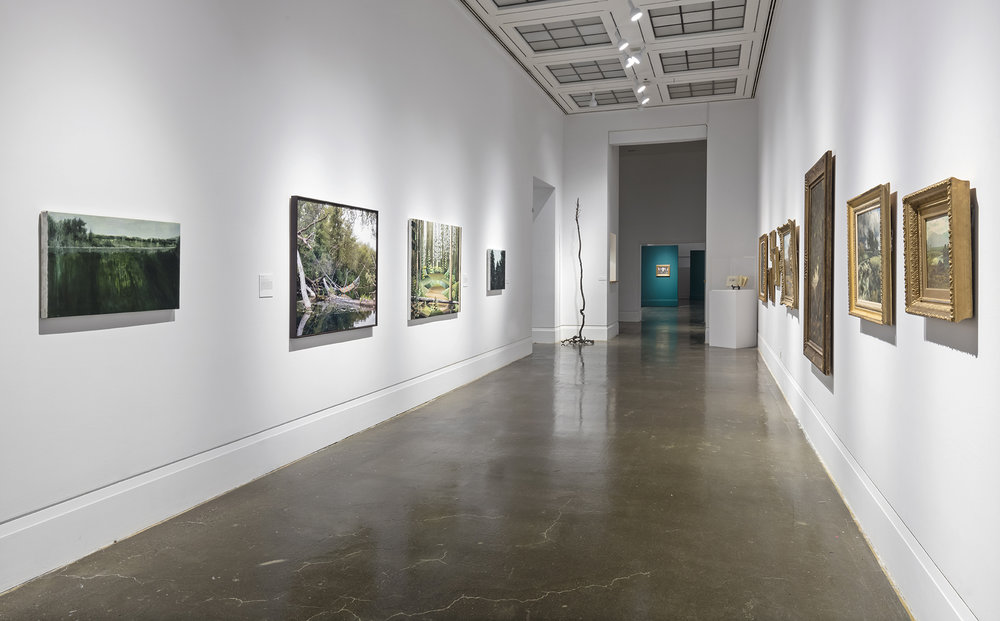 Beyond the Pines, Robert Freeman Gallery, Art Gallery of Mississauga. Photo by Toni Hafkenscheid.