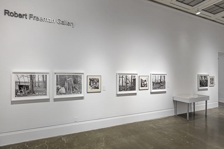 A Necessary Fiction , Robert Freeman Gallery, Art Gallery of Mississauga. Photo by Toni Hafkenscheid.