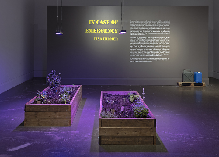 Lisa Hirmer: In Case of Emergency , Main Gallery, Art Gallery of Mississauga. Photo by Toni Hafkenscheid.