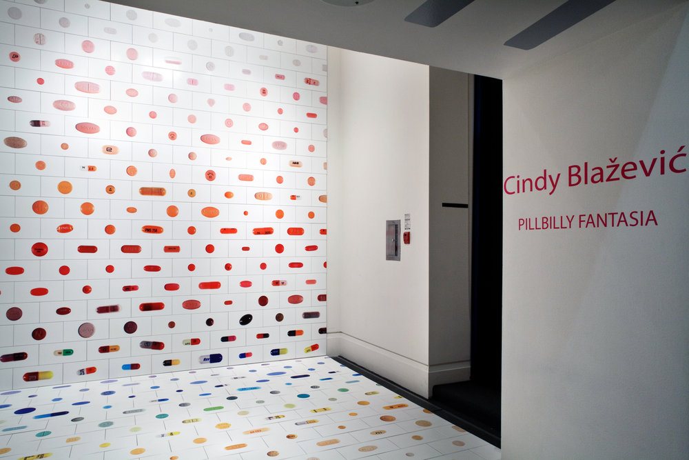 Pillbilly Fantasia , XIT-RM, Art Gallery of Mississauga. Photo by Janick Laurent.
