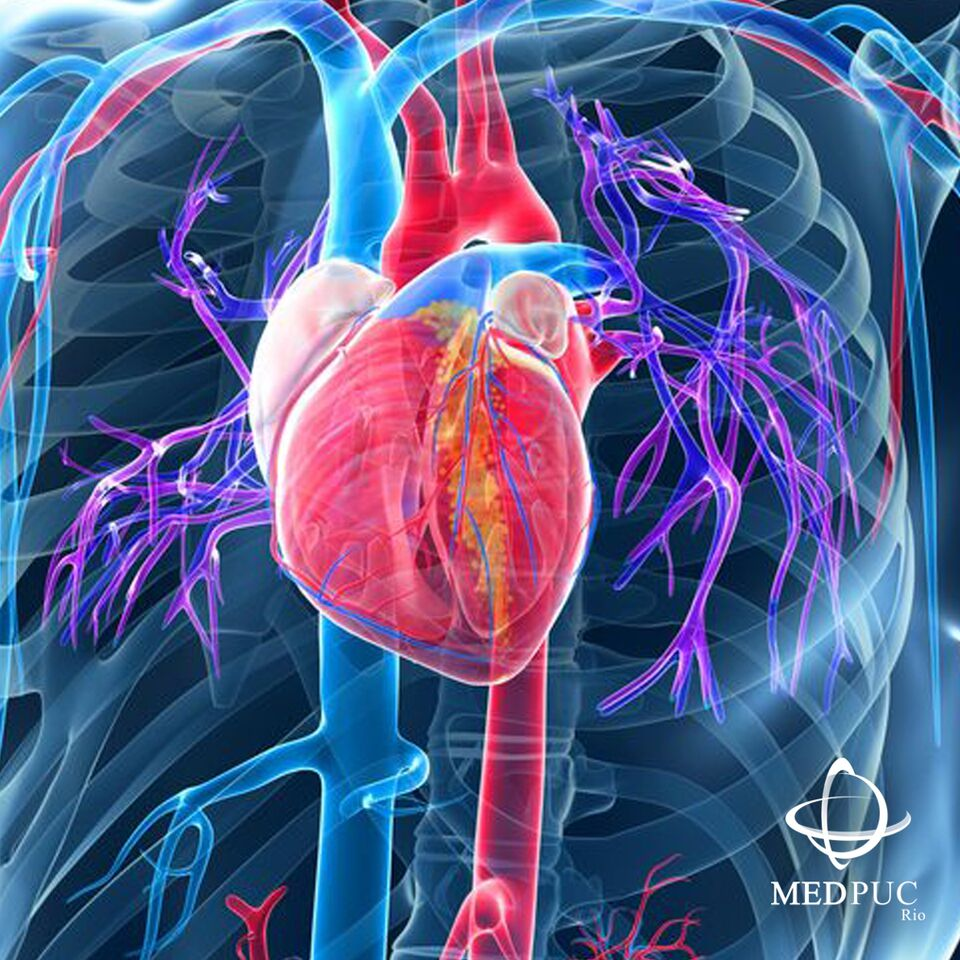cirugia cardiovacular.jpg
