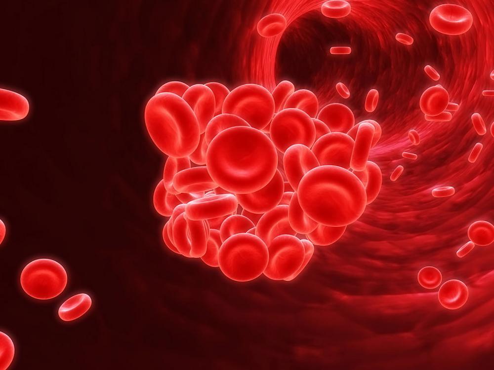 Trombose é uma complicação crítica das doenças cardíacas e pode ser evitada pelo inibidor de TMAO