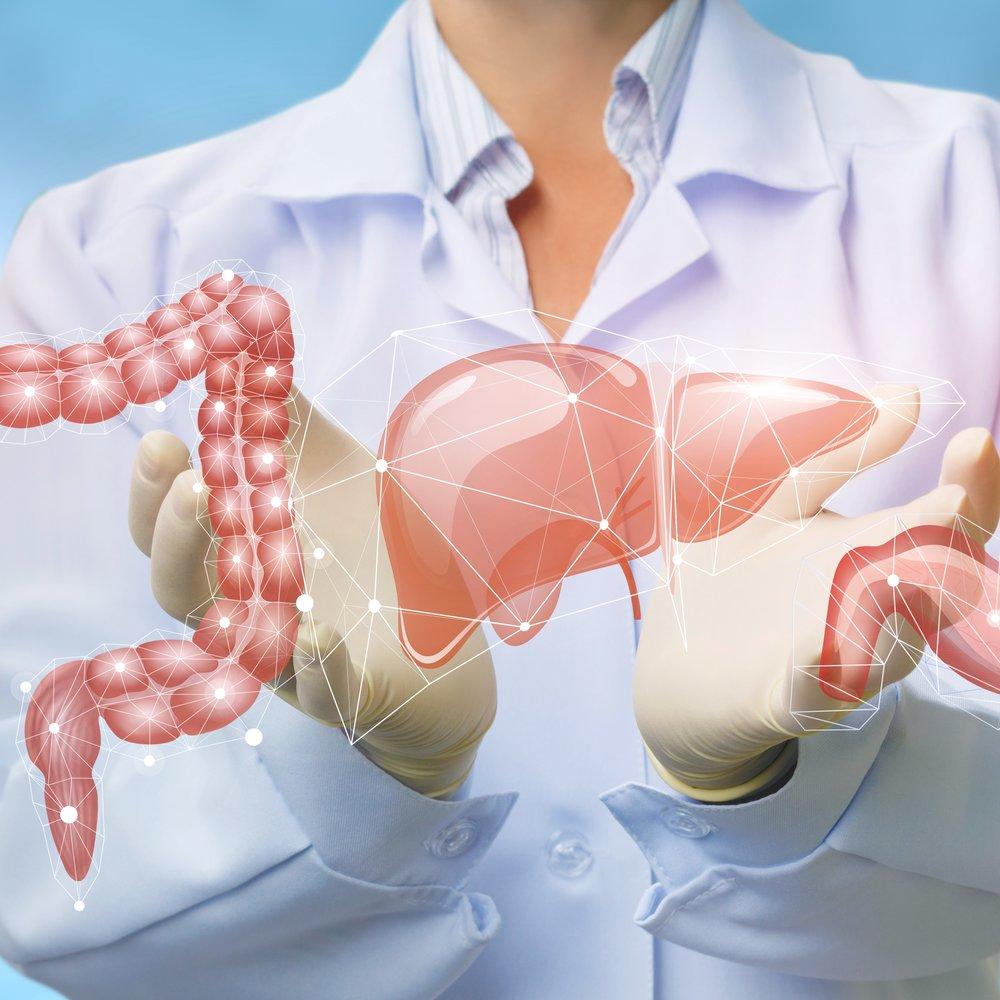 Gastroenterologia -