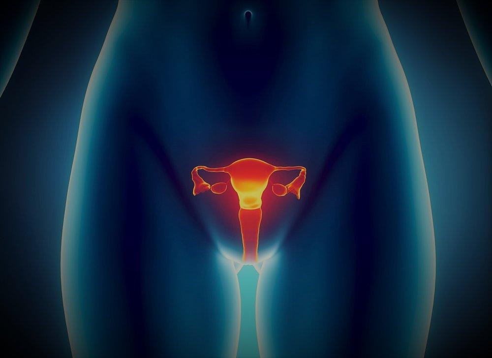 Ginecologia e Obstetrícia -