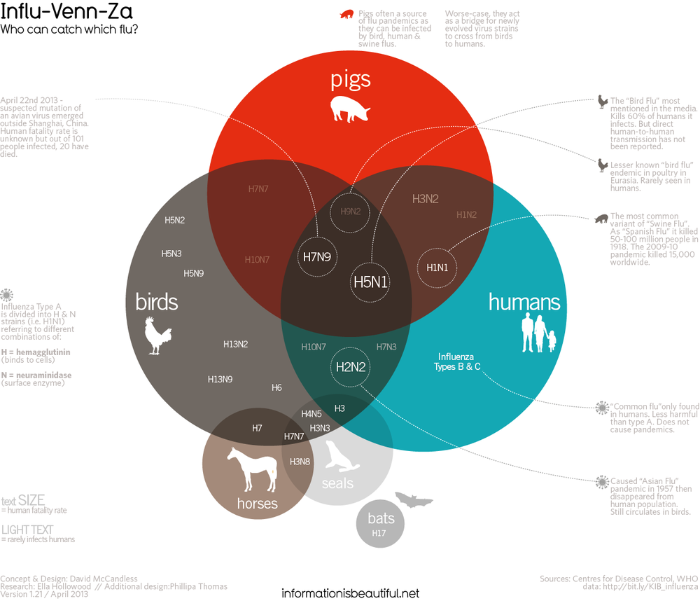 David McCandless 's infographics are simplistic and visually engaging.