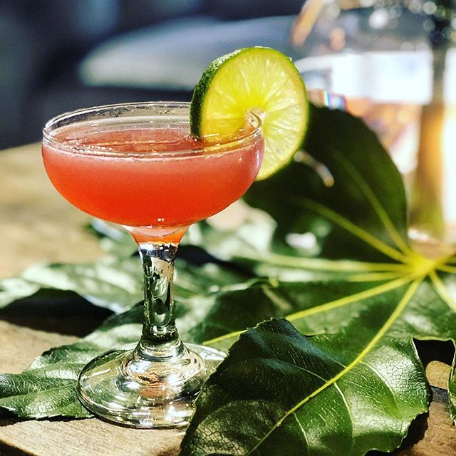 This beautiful weather is making us thirsty!  Cocktails anyone?! Cheers to your weekend ahead!