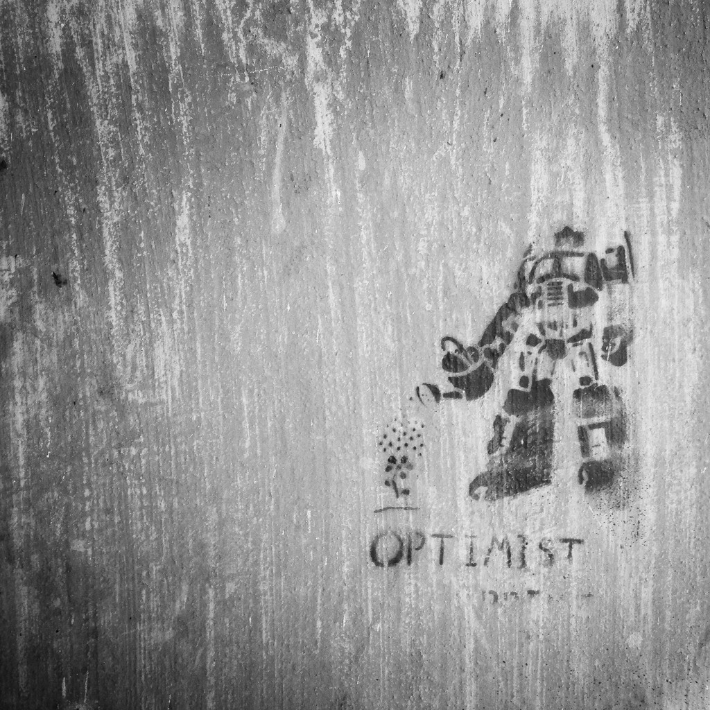 2014.01.optimist