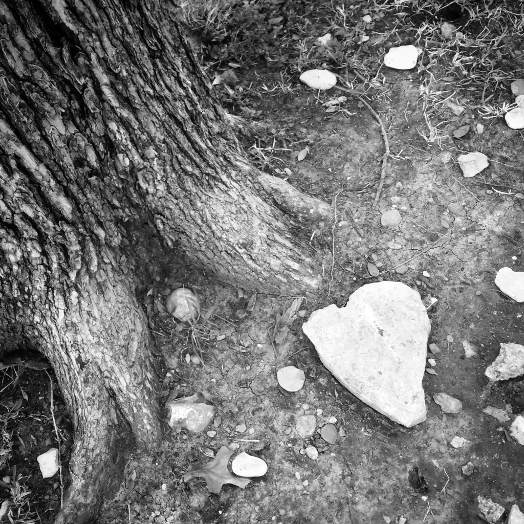 2014.heartrock