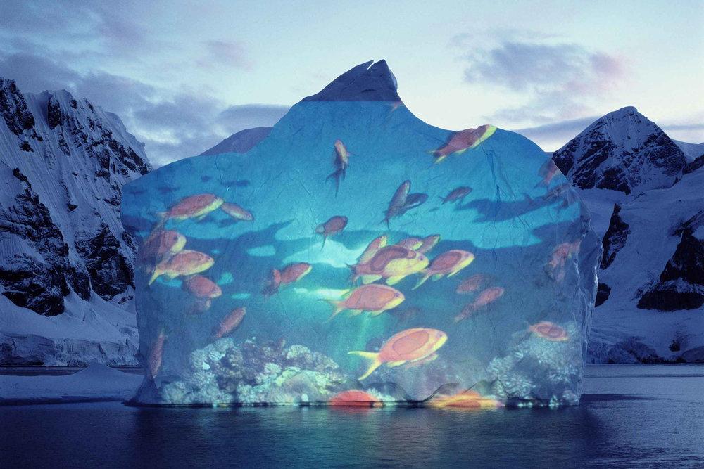 1112_Antarktis_Eisberg-Goldfische-Antarktis1.jpg