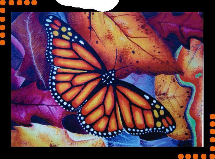 Butterfly-Portfolio-Elspeth-McLean-Custom