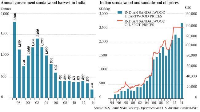sandalwood india