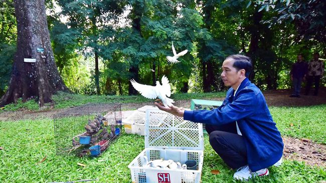 Indonesian President Joko Widodo releases captive birds in 2016.