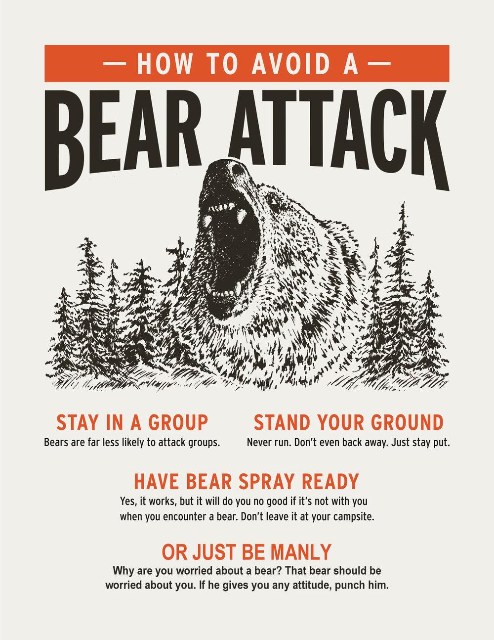 bear-attack.jpg