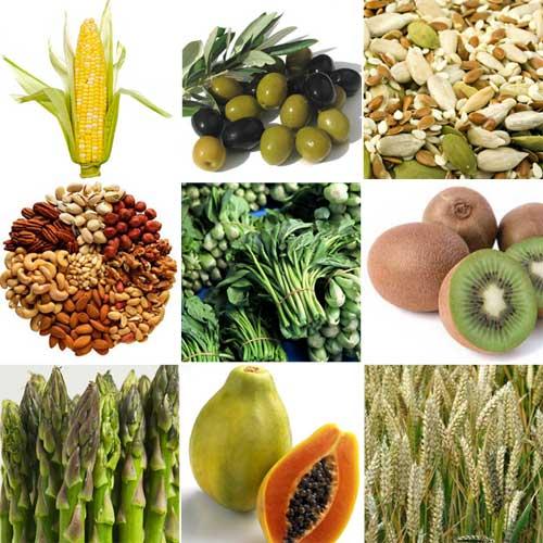 vegan proteins.jpg