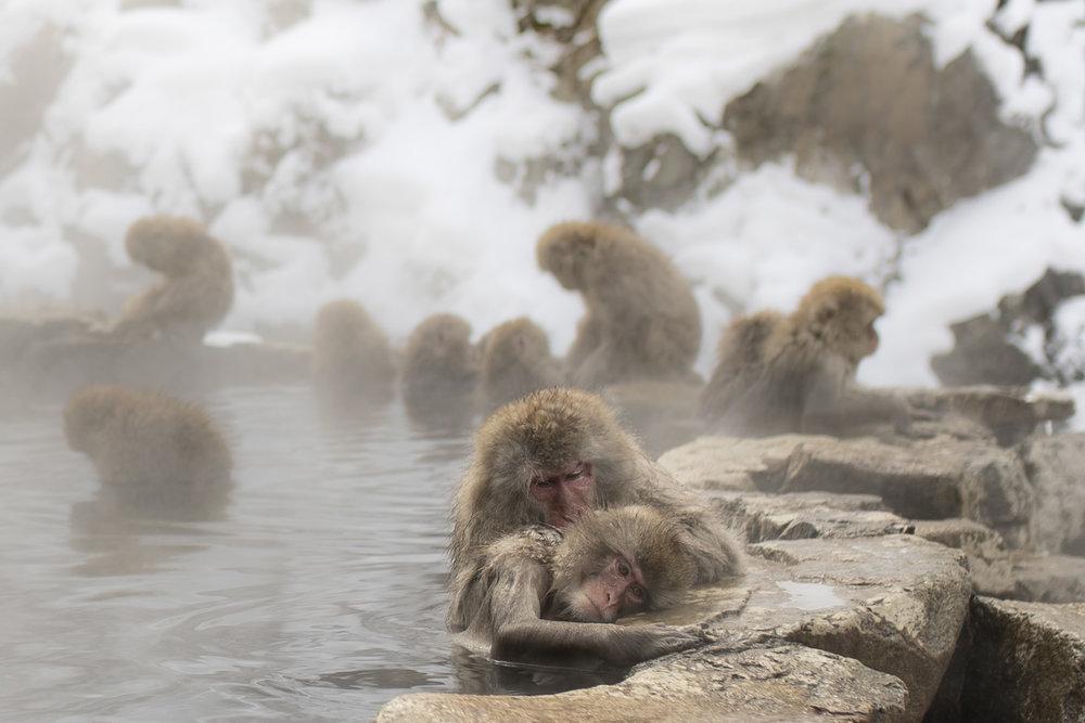 Es wird nicht nur im heißen Wasser gechillt, auch die Körperpflege darf nicht zu kurz kommen.