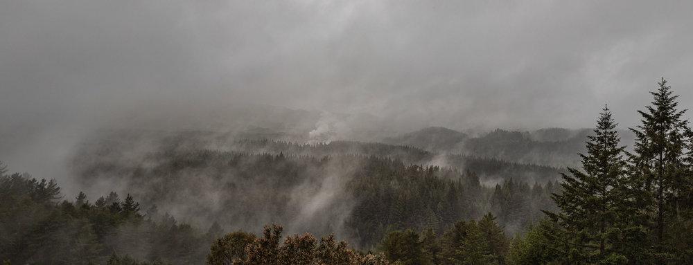 Der neblige Ausblick über die qualmenden Wälder von Rotorua.