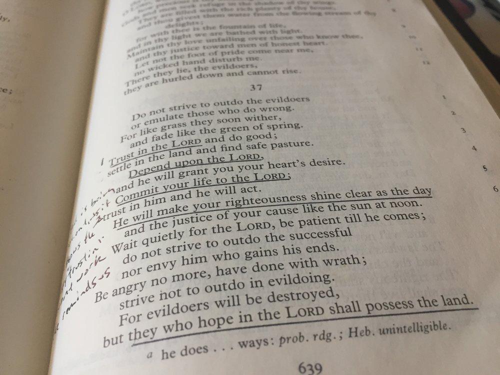 My NEB Bible
