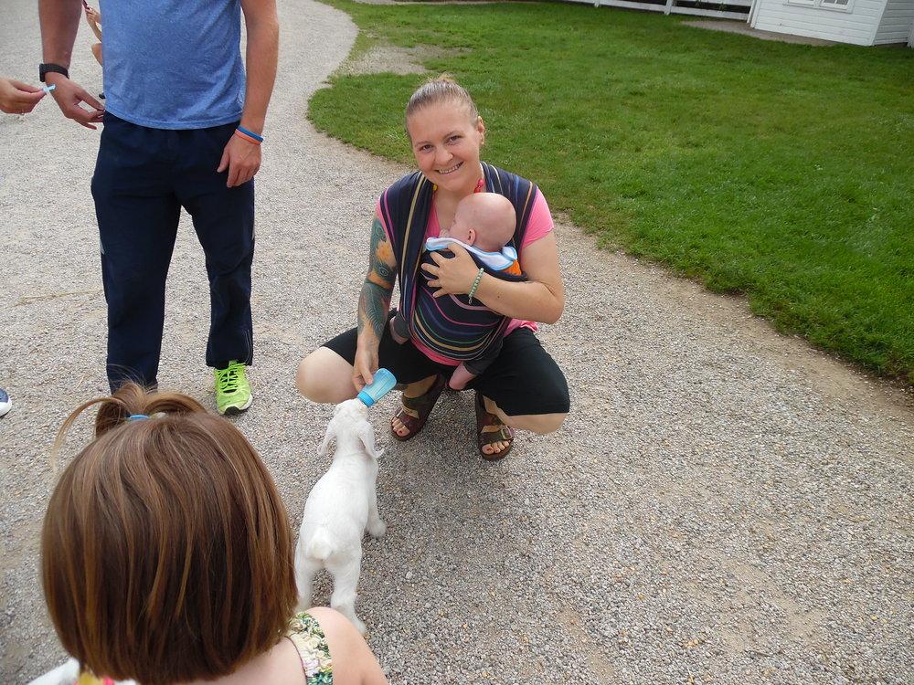 Babywearing and feeding baby goats!