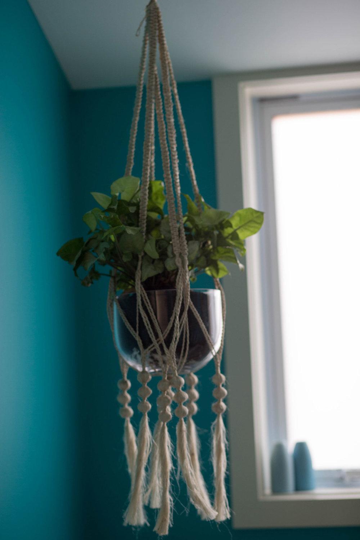 Final-Hanging-Plant.jpg