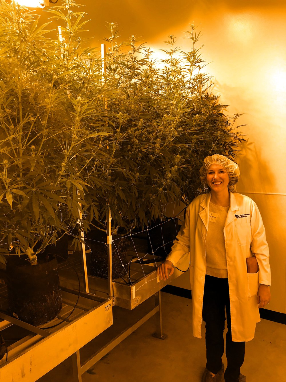 Dr. Jetter toured the Compassionate Cultivation Dispensary in February 2017.