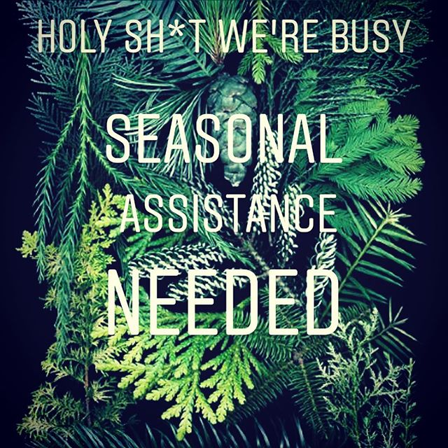 Need a job for 3-4 weeks?!? Ready to kickass at Dallas' one and only Natural Wine, Artisanal Spirits & Plant Store? Apply within or hit us up in a pm.