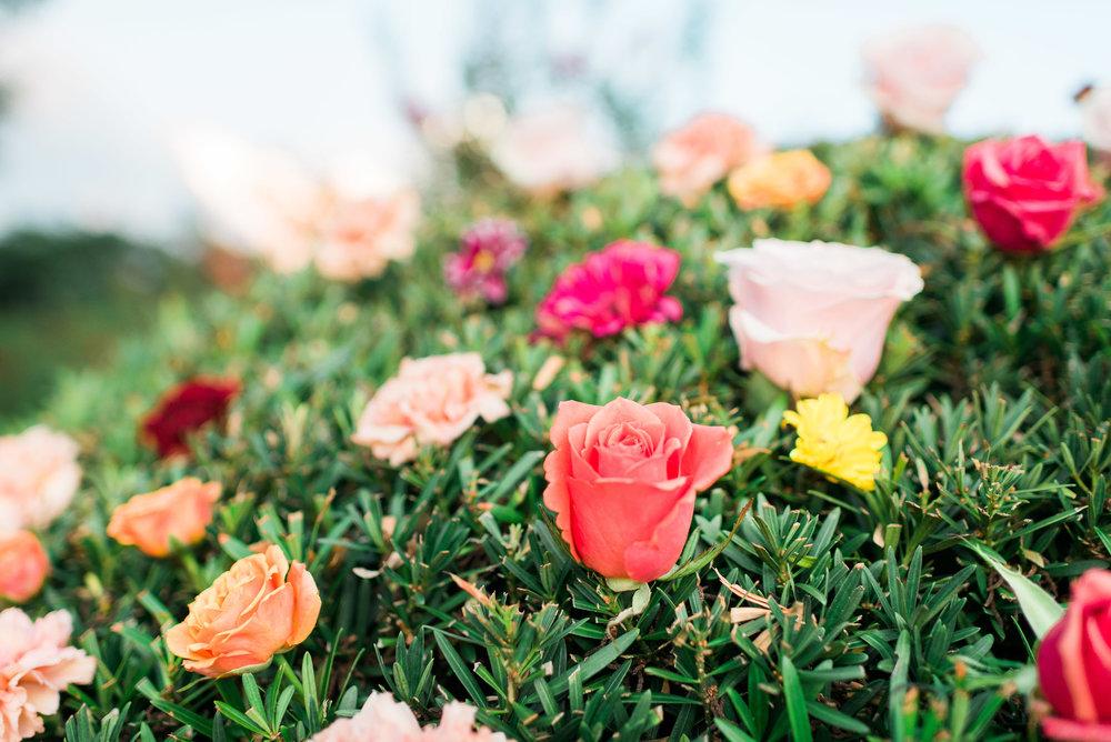 Flowerchildbushflowers(1of19).jpg