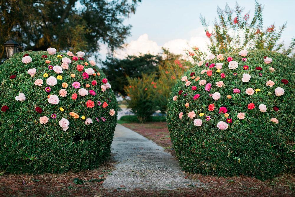 Flowerchildbushflowers(2of19).jpg
