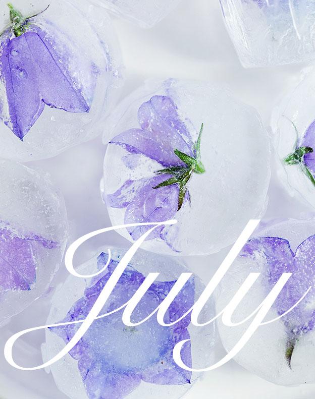 purple-ice_july_edited-11.jpg
