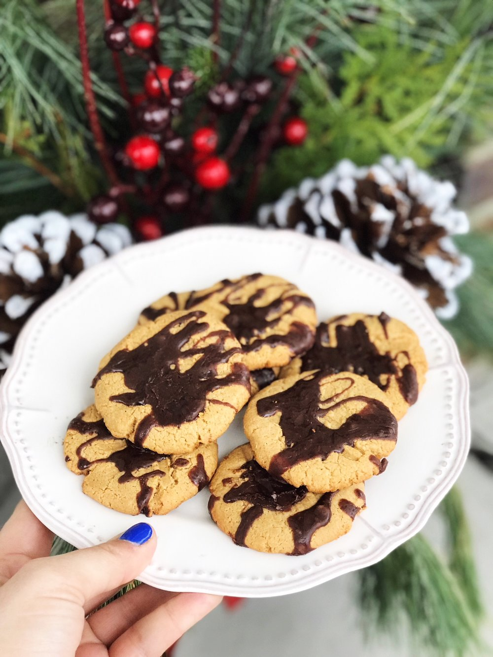 Peanut Butter Protein Cookies - for your Holiday Party.