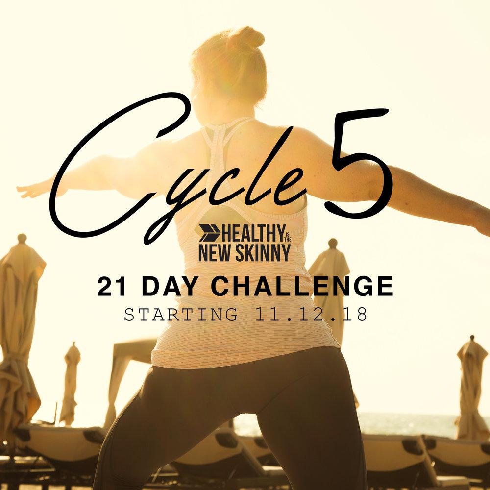 cycle 5.jpg