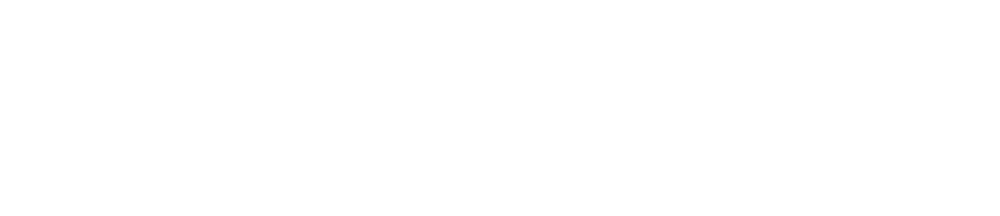 Budline Logotype Wht.png
