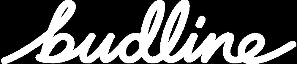 Budline Logotype Wht.png